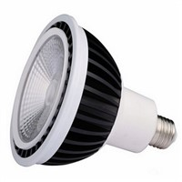 High Efficiency Sharp COB LED Par38 E27, Indoor LED Light 15W With CE And Rohs