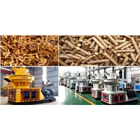 Small Wood Pellet Mill Eases Energy Shortage