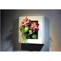Indoor Artificial Succulent Plants Picture Frame