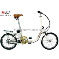 Lightweight Folding Electric Bike
