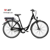 Electric bicycle  with Alloy Suspension Fork