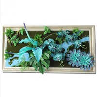 Artificial Plants Wall Picture Frame