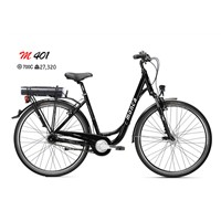300W E Bike Lady Electric Bicycle with Strict Quality Control