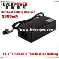 Everpower fast 2A 12Volt LiFePO4 battery car charger