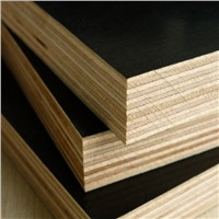 Best price film faced plywood from plywood factory