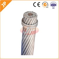 Aluminum Alloy Conductor Steel Reinforced (AACSR)