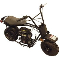 Taotao ATD80 80cc Mini Dirt Bike