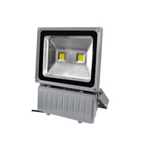 EPISATR IP65 100W  LED FLOOD LIGHT