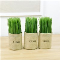 Artificial Mini Grass