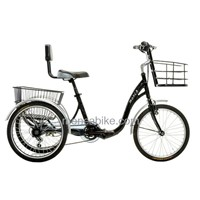 Convenient and Comfortable Electric Tricycle for fun shopping