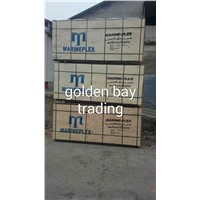 China shuttering film faced plywood with poplar core,combi core