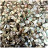 Black Mother of Pearl Shell Mosaic Irregular Mosaic Tile