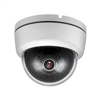 25M 30Black Leds Dome Camera with Environmental Housing