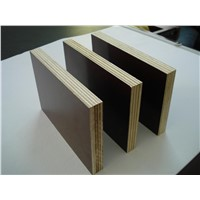 formwork plywood/waterproof plywood