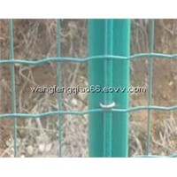 Dutch Wire Mesh Fence For Sale