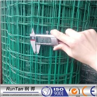 Deep green PVC coated holland electric welded wire mesh