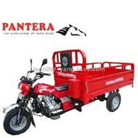 PT250ZH-8 Chongqing Durable Capacity Cargo Use Hot in Africa 3 Wheel Passenger Motorcycle
