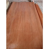 face and back veneers for plywood, MLH, red color veneer, Ev poplar