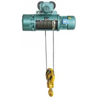 Selling Electric Wire Rope Hoist