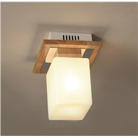 Fashion simple living room/restaurant/hotel ceiling light