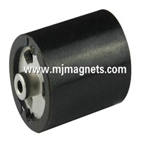 PPS injection molded NdFeB permanent magnet
