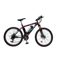 China 2015 Hot Sell Cheap Electric Bicycle