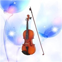 ljy Pleasant Spruce the violin For beginners