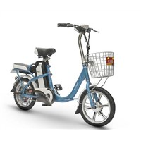 Popular in South America Electric Bicycle