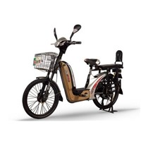 Loading electric bicycle
