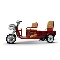 Cargo and passenger electric tricycle