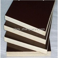 Whole Popalr Core, Brown Film Faced Plywood, 18mm