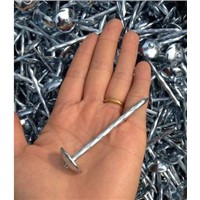 Umbrella Head Roofing Nails BWG9-BWG13