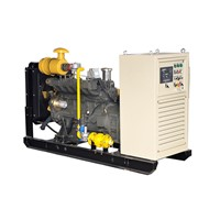 50kw natural gas generator with CE approved