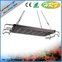 16-60inch led light series simulate sunset inground light manufacturers