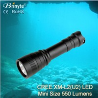 Brinyte magnetic switch led dive light