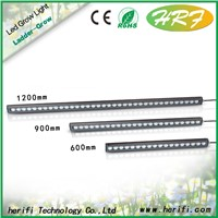 Ladder Series 30w 45w 60w Led light bar , light bar LED