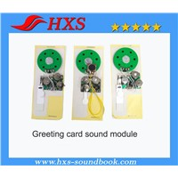 Shenzhen factory sound chip for greeting card