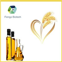 pure and fresh wheat germ oil with best price from ISO HALAL certified manufacturer