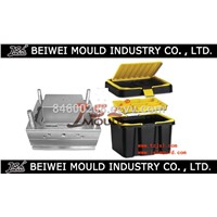 OEM custom injection plastic tool box mould