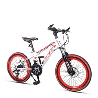 "20"" High Carbon Steel Mountain Bike with Front Suspension Fork"