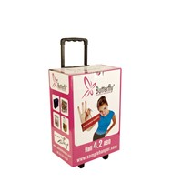 Point of sale cardboard trolly box