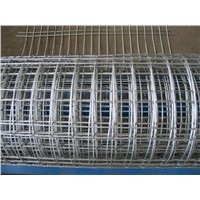 Diamond Group hot sale competitive  weld wire mesh