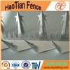 Anti-Climb Galvanized Wall Spikes Wire Mesh Fence