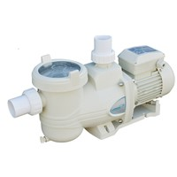 swimming pool circulation pump and water pool