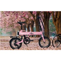 Red frame 16inch electric bike