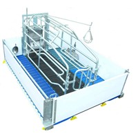 Feeding equipment for pig- Pig Farrowing crate with PVC Plank fence