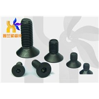 Flat Socket Screws
