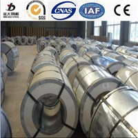 Galvanized Steel Strips Galvanized Steel Rolls in Coils