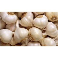 2015 garlic/normal white garlic/pure white garlic with cheap price