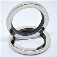 PTFE Oil Seals Teflon Oil Seals Stainless Steel Oil Seals